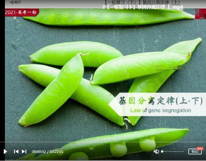 2021高三生物一轮复习下秋季班网课视频全集(张鹏 19集含讲义)