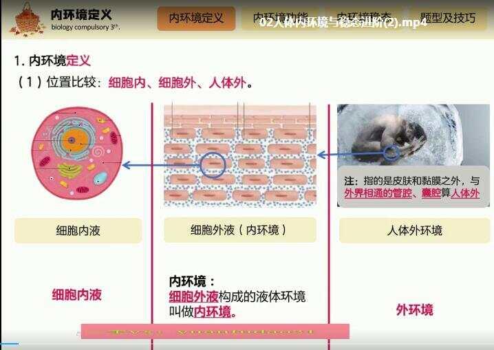 赵静娴2020高二生物秋季985班全套视频课程百度网盘